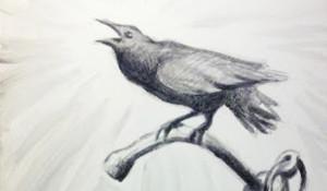 Crow & Anchor